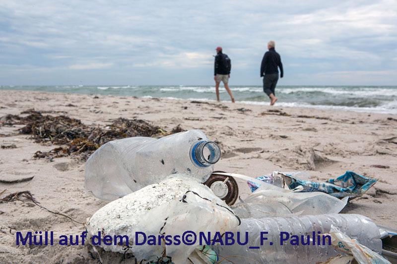 Müll am Strand auf dem Darss